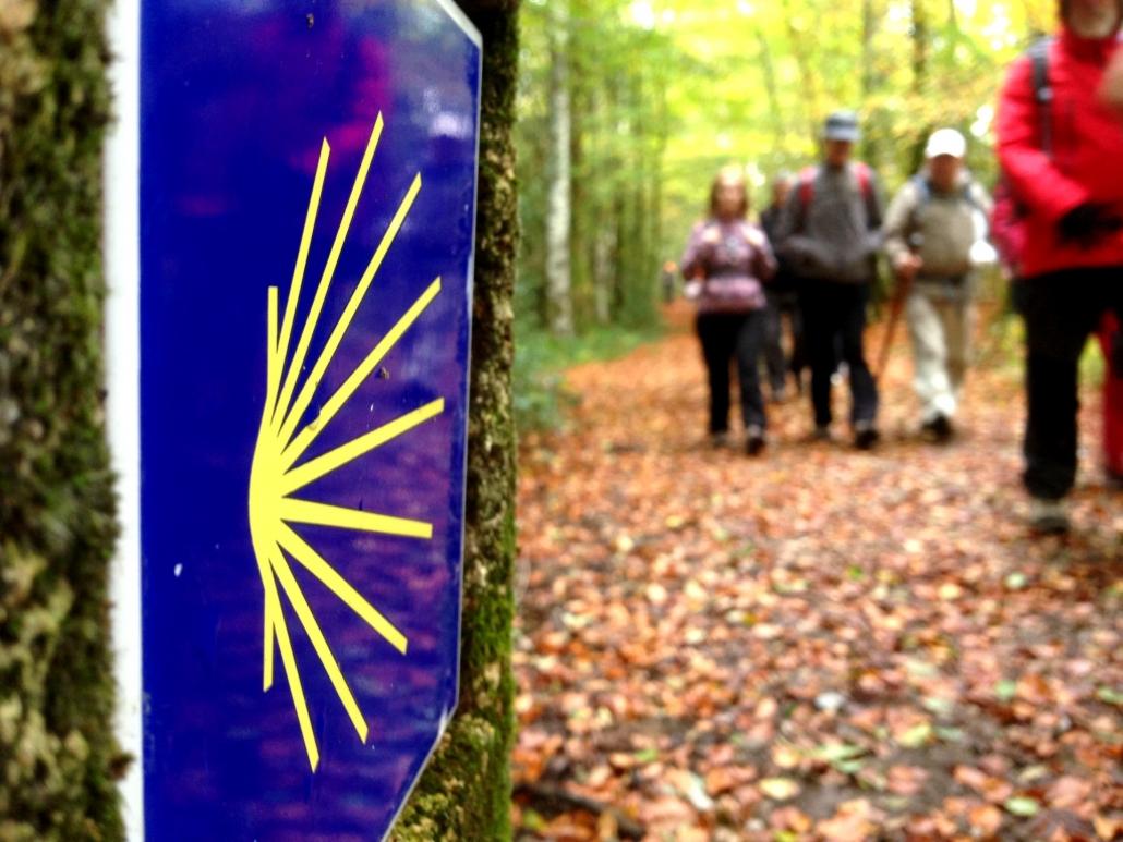 Excursionistas en Camino de Santiago en Navarra