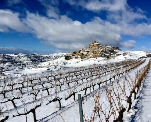 Vignobles et vue panoramique d'Ujué sous la neige